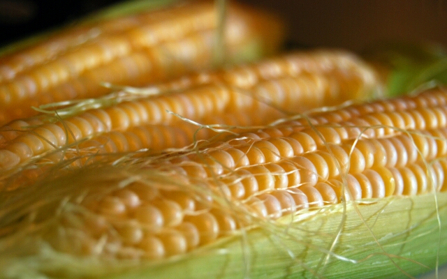 sweet corn Sweet corn, also known as sugar corn, is much used as a vegetable it's sweet, and juicy seeds are rich in health-benefiting beta-carotene, vitamin.